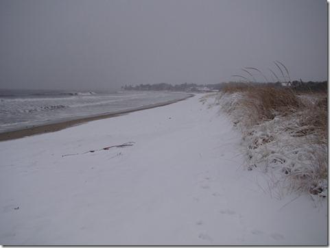blizzard00001
