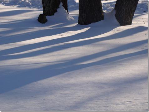 Snow00003