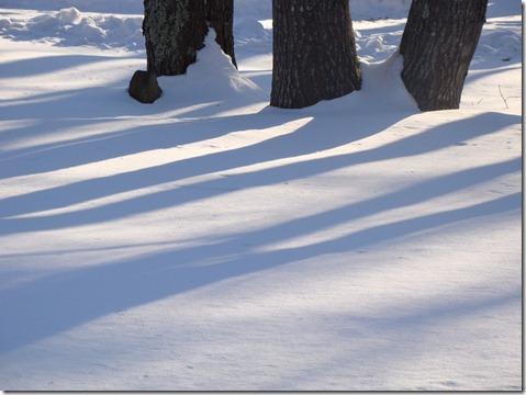 Snow00004